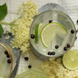 Bodzás gin tonic
