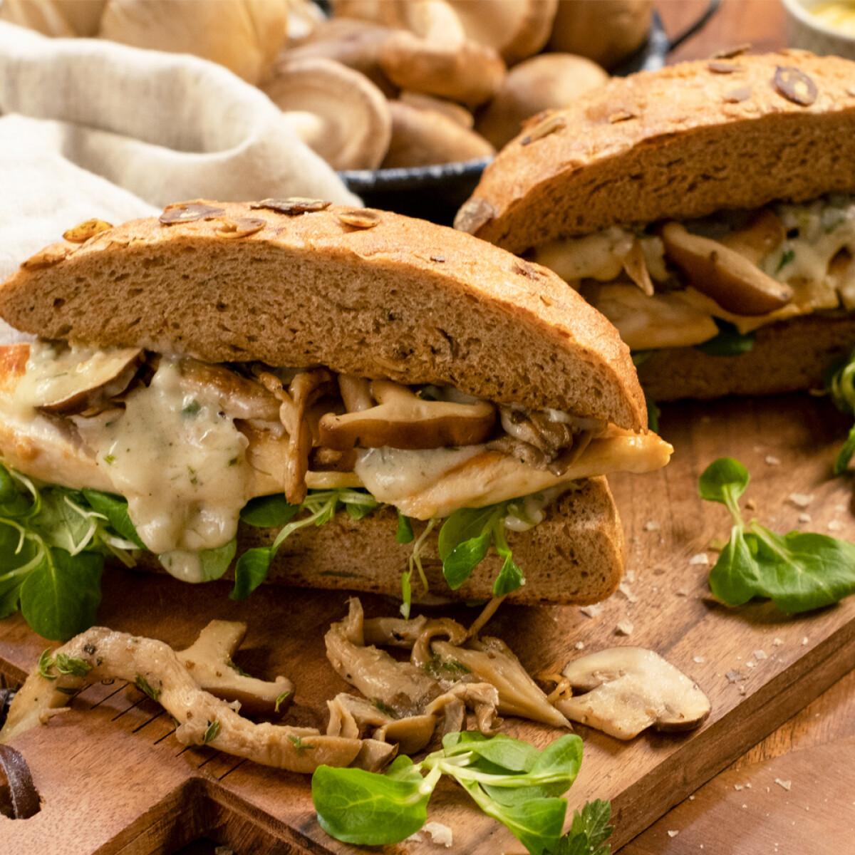 Ezen a képen: Pirított csirkés-gombás szendvics borsos-mustáros szósszal