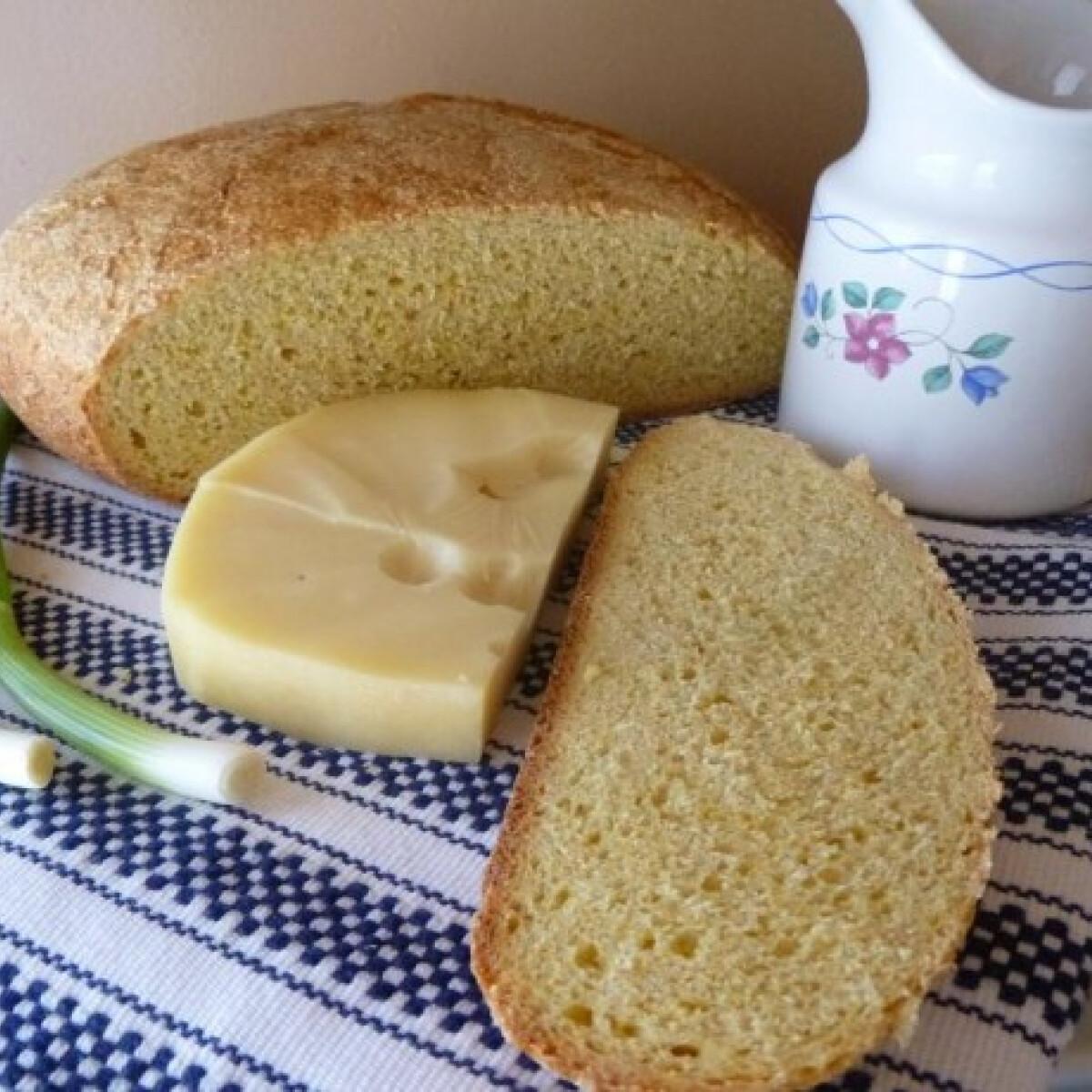 Ezen a képen: Jászsági kenyér ínséges időkre