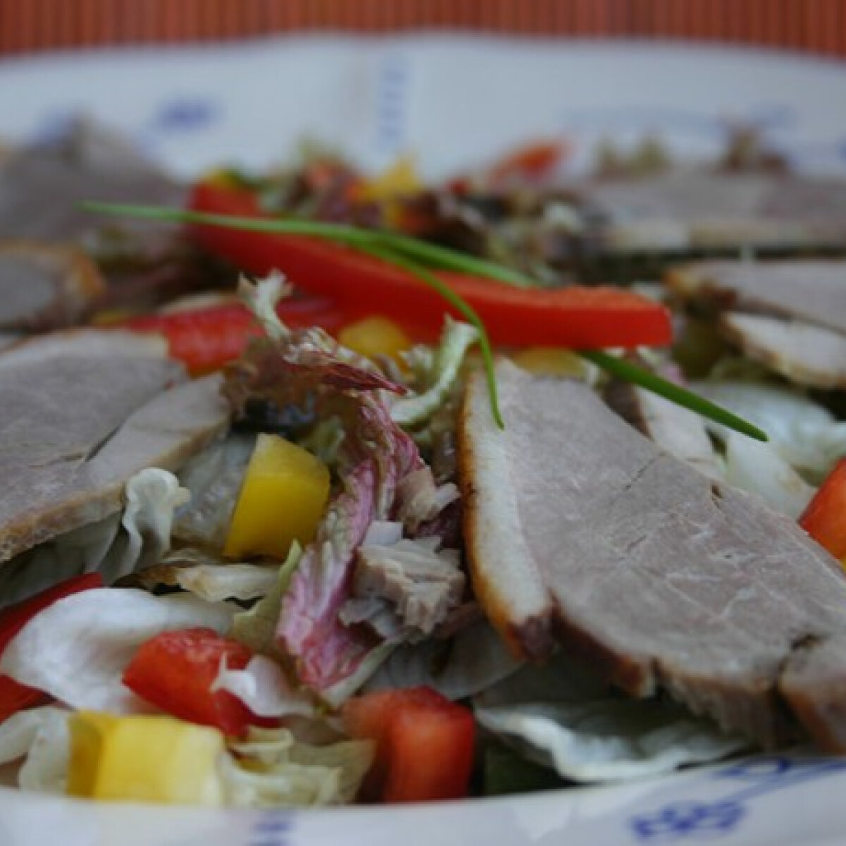Ezen a képen: Sült kacsamell salátaágyon