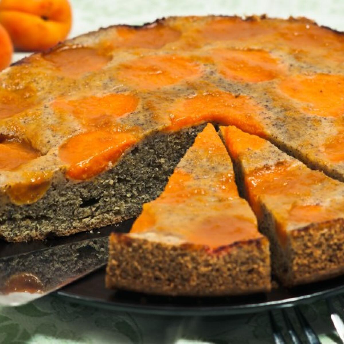 Ezen a képen: Mákos-sárgabarackos torta