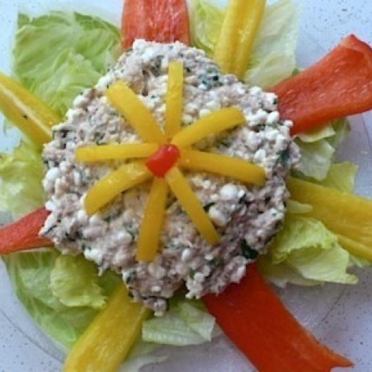 Ezen a képen: Cottage cheese-es tonhalpástétom