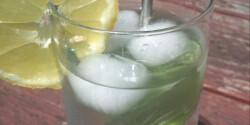 Mentaszörp és citromfűszörp