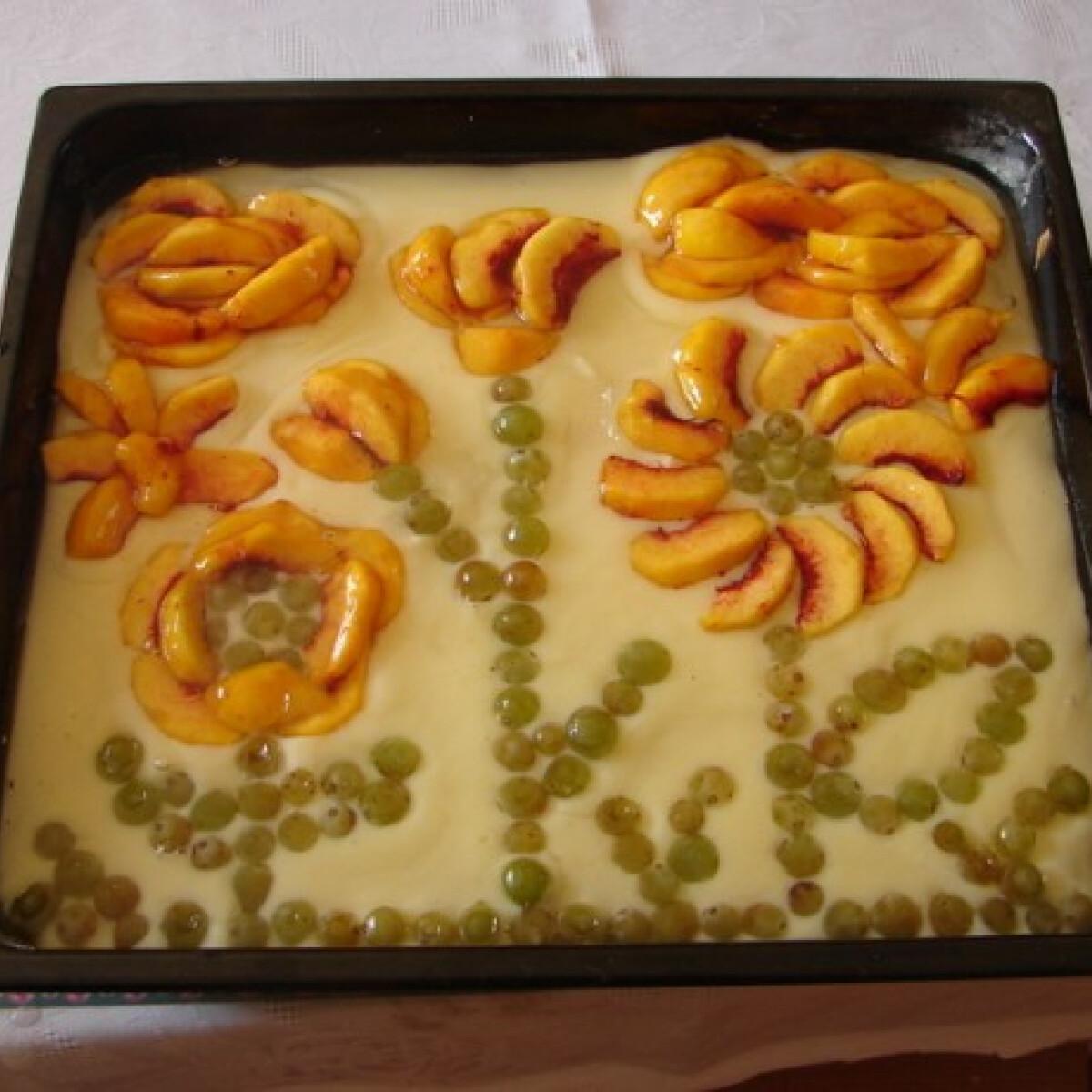Ezen a képen: Gyümölcstorta Gega konyhájából