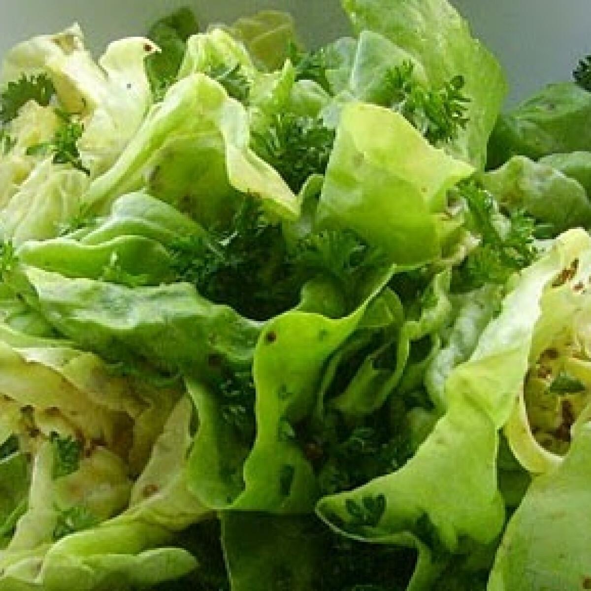 Mustáros-petrezselymes fejes saláta