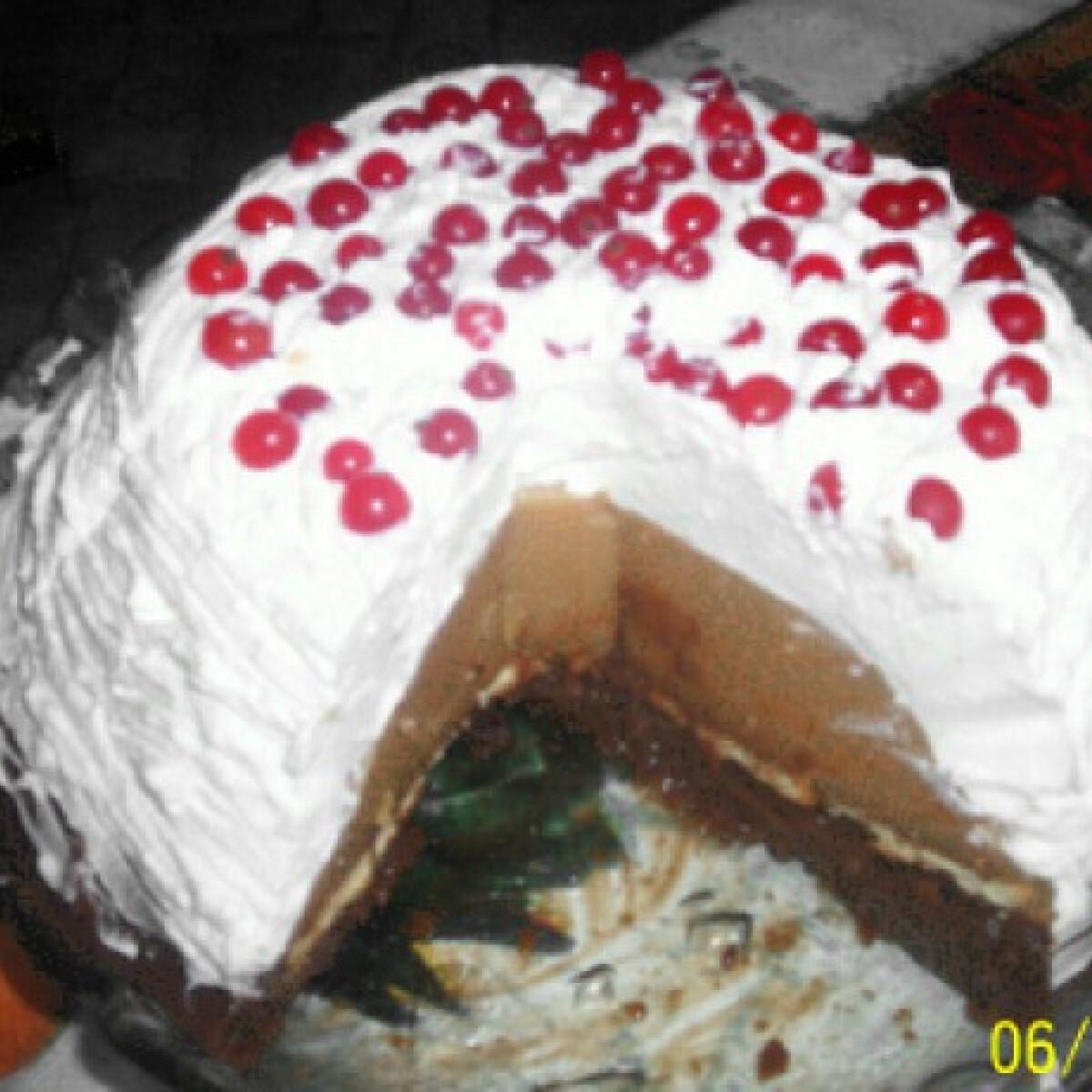 Pudingos tejszínes torta