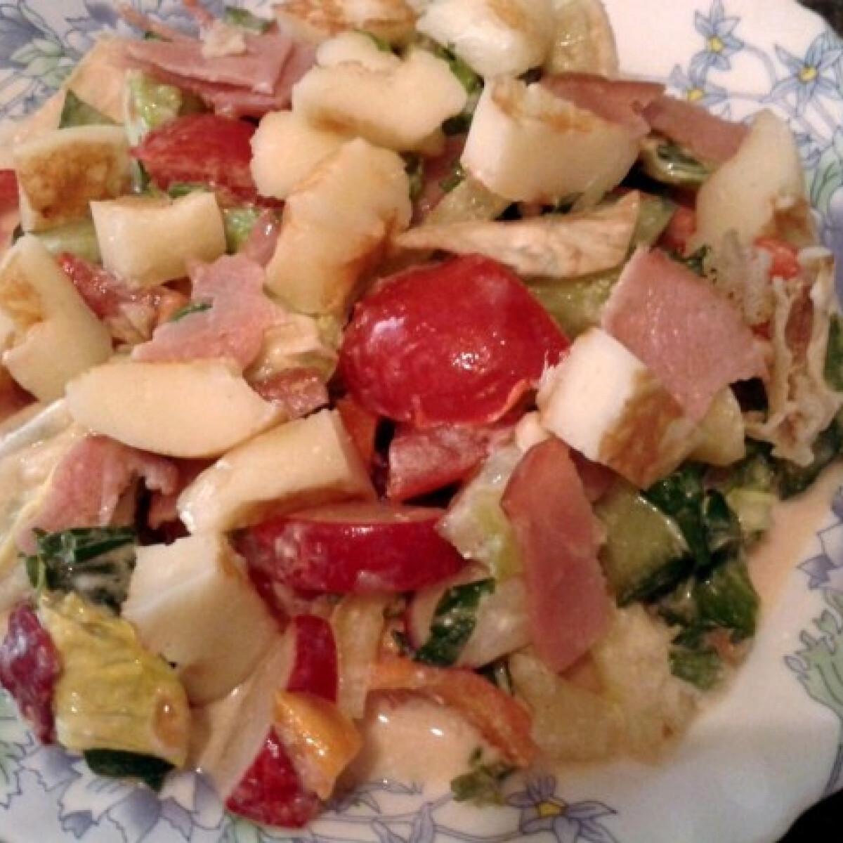Ezen a képen: Medvehagymás-mézes tavaszi saláta