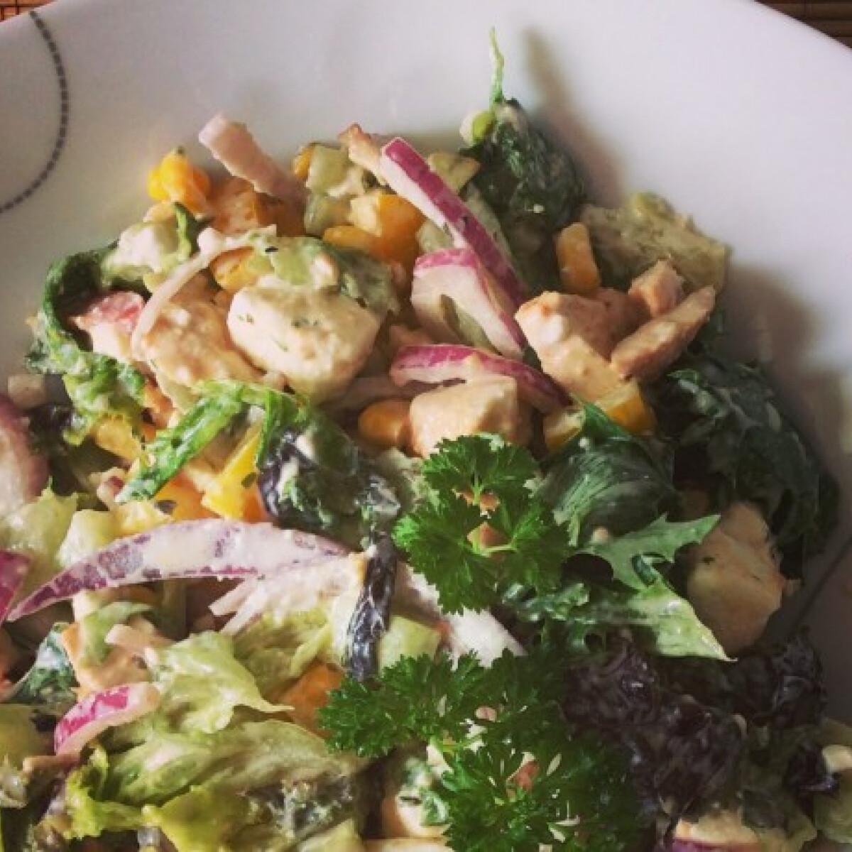 Ezen a képen: Fetasajtos-grillcsirkés saláta