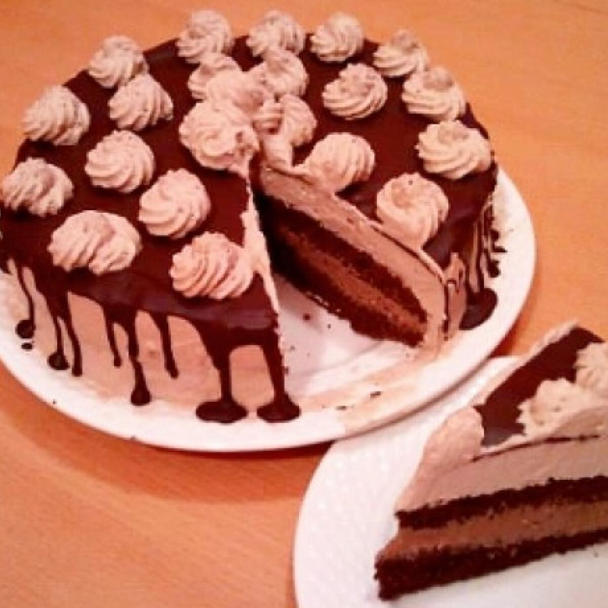 Ezen a képen: Csokitorta Nyuszi konyhájából