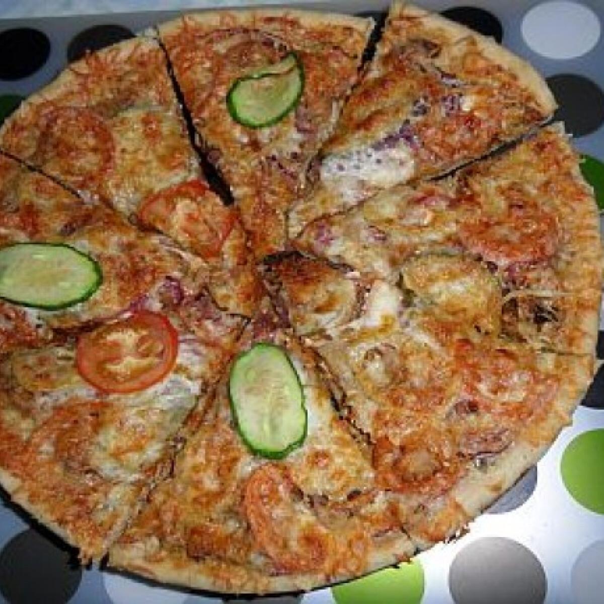 Ezen a képen: Pulyka gyros pizza