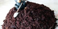 Gesztenyés vakondtúrás (Vakondtúrás torta 2.)