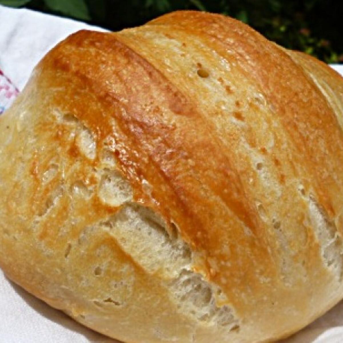 Ezen a képen: Lusta kenyér Torma bevált receptjével