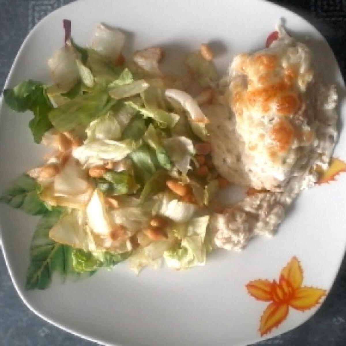 Ezen a képen: Tejfölös-sajtos csirkemell mogyorós salátával