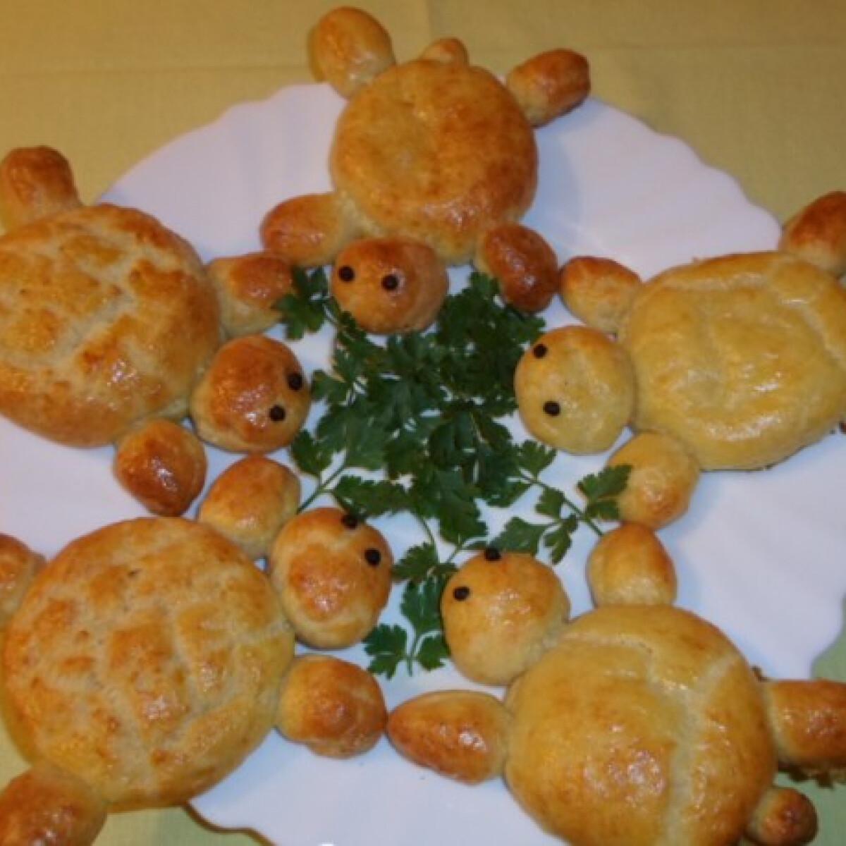 Ezen a képen: Túrós-sajtos teknőcök