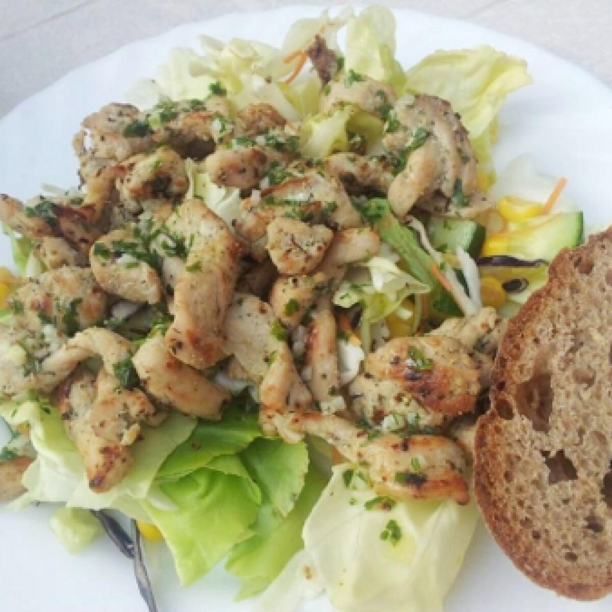 Ezen a képen: Vegyes saláta pulykamell csíkokkal