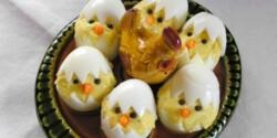 Húsvéti csibék tojásban