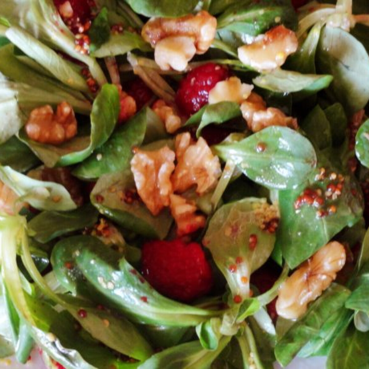 Ezen a képen: Galambbegy saláta málnával és dióval