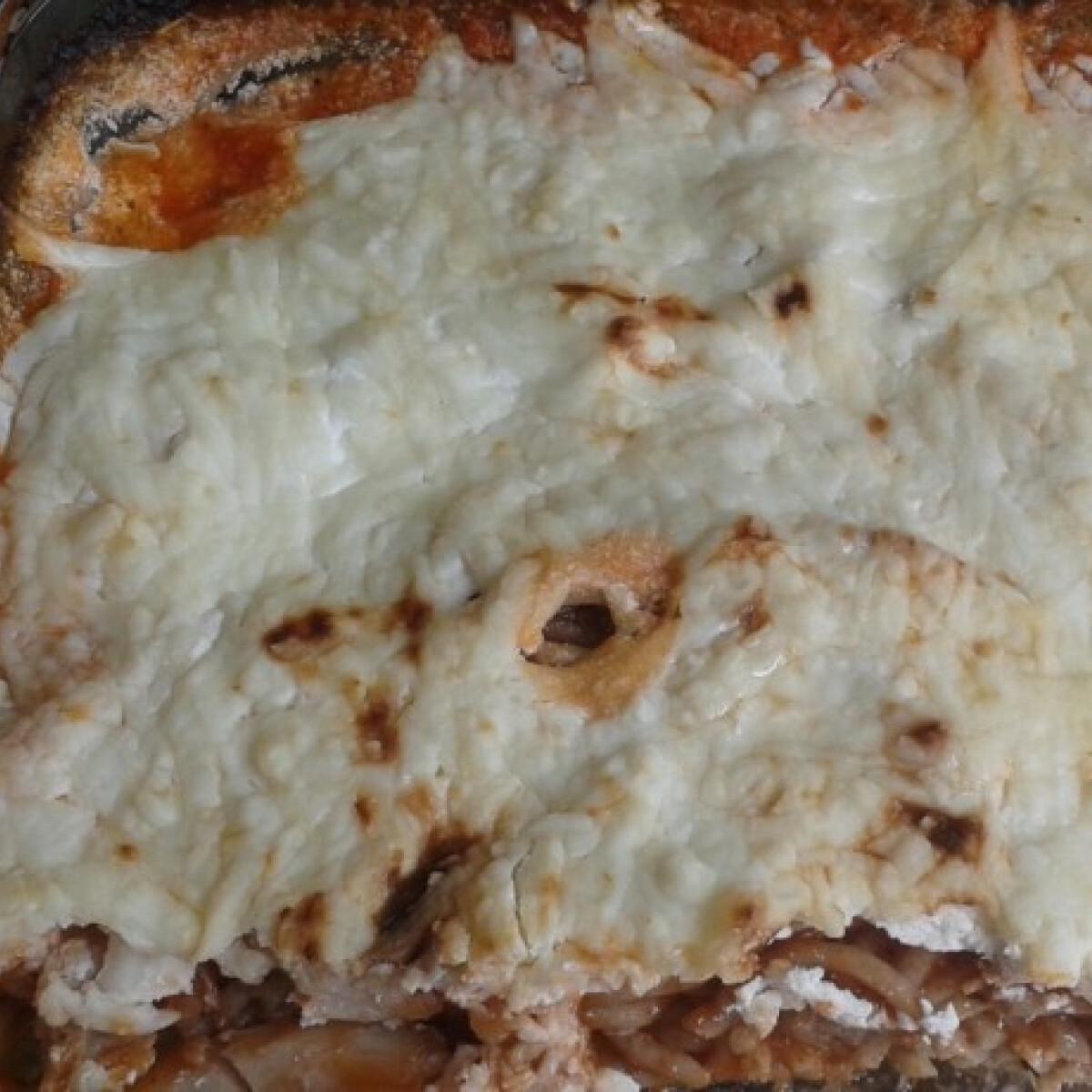 Ezen a képen: Sütőben sült tejfölös bolognai
