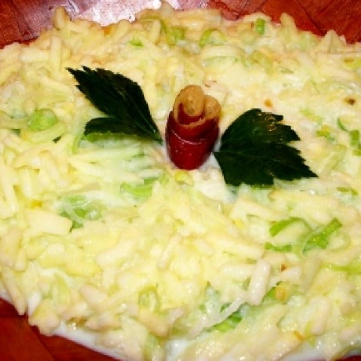 Ezen a képen: Almás póréhagyma saláta