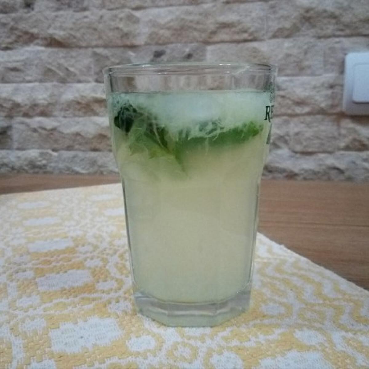 Ezen a képen: Mentás rostos limonádé