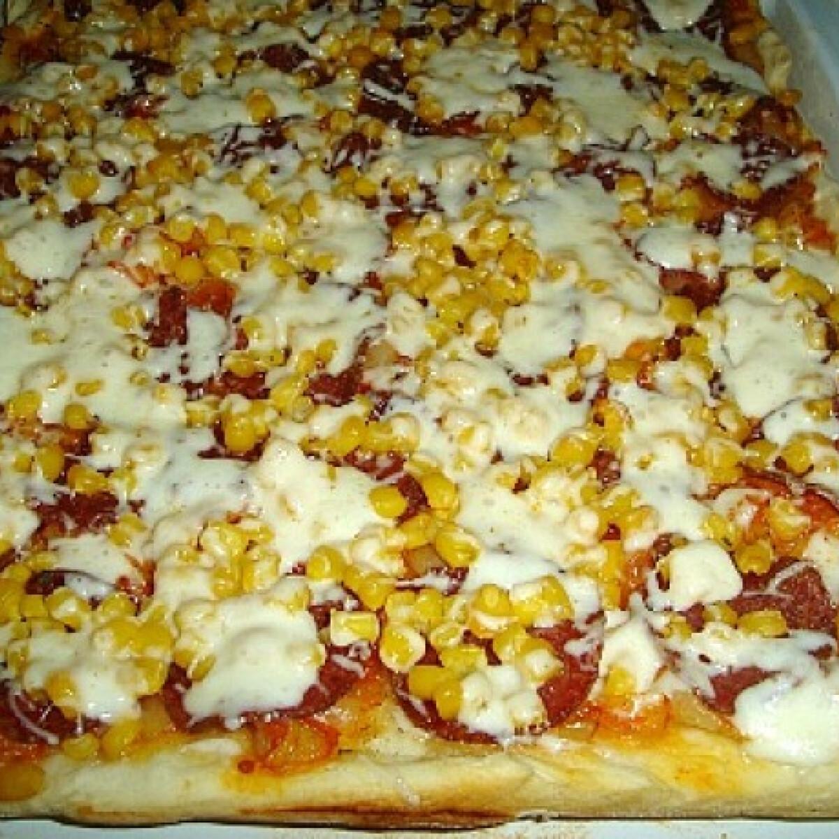 Ezen a képen: Lecsós pizza gazdagon