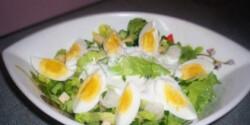Tavaszi retek saláta