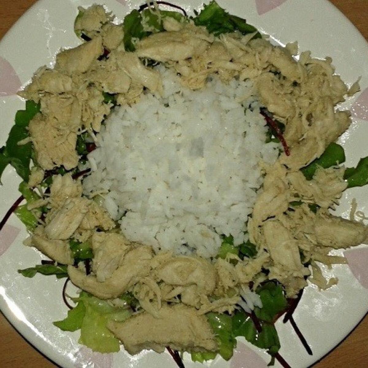 Fűszeres csirkemellcsíkok zöldségágyon tálalva
