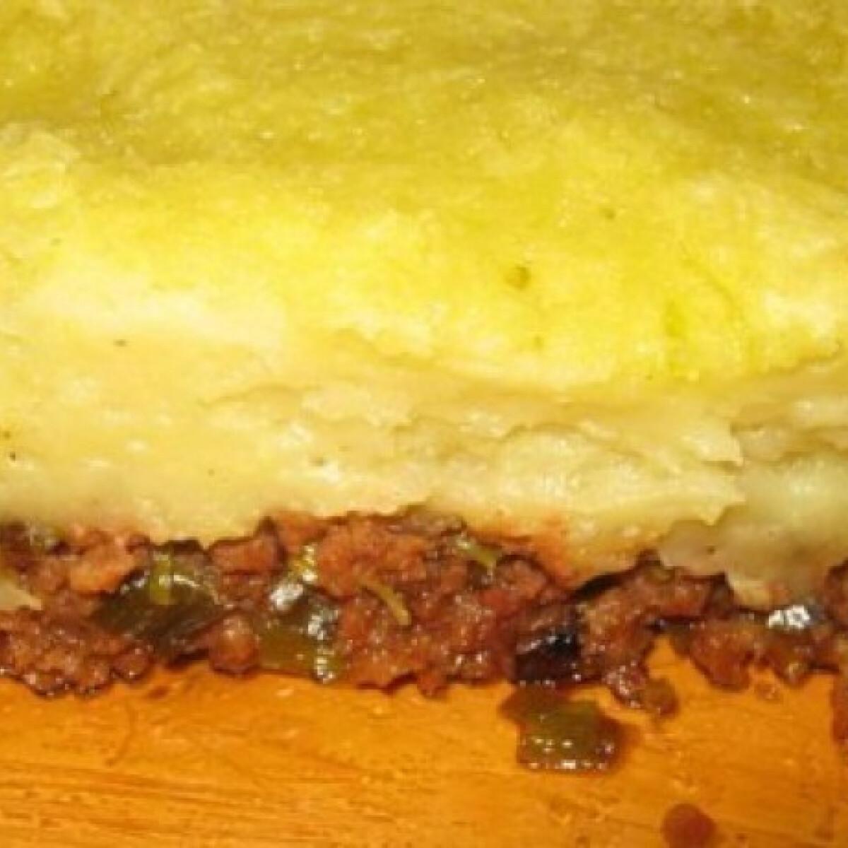 Ezen a képen: Póréhagymás rakott hús