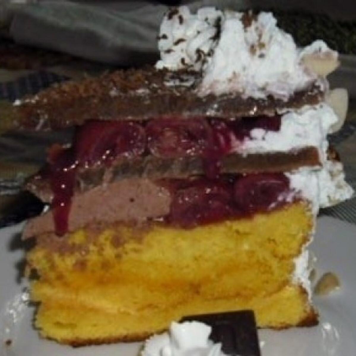 Ezen a képen: Rabfburg-torta