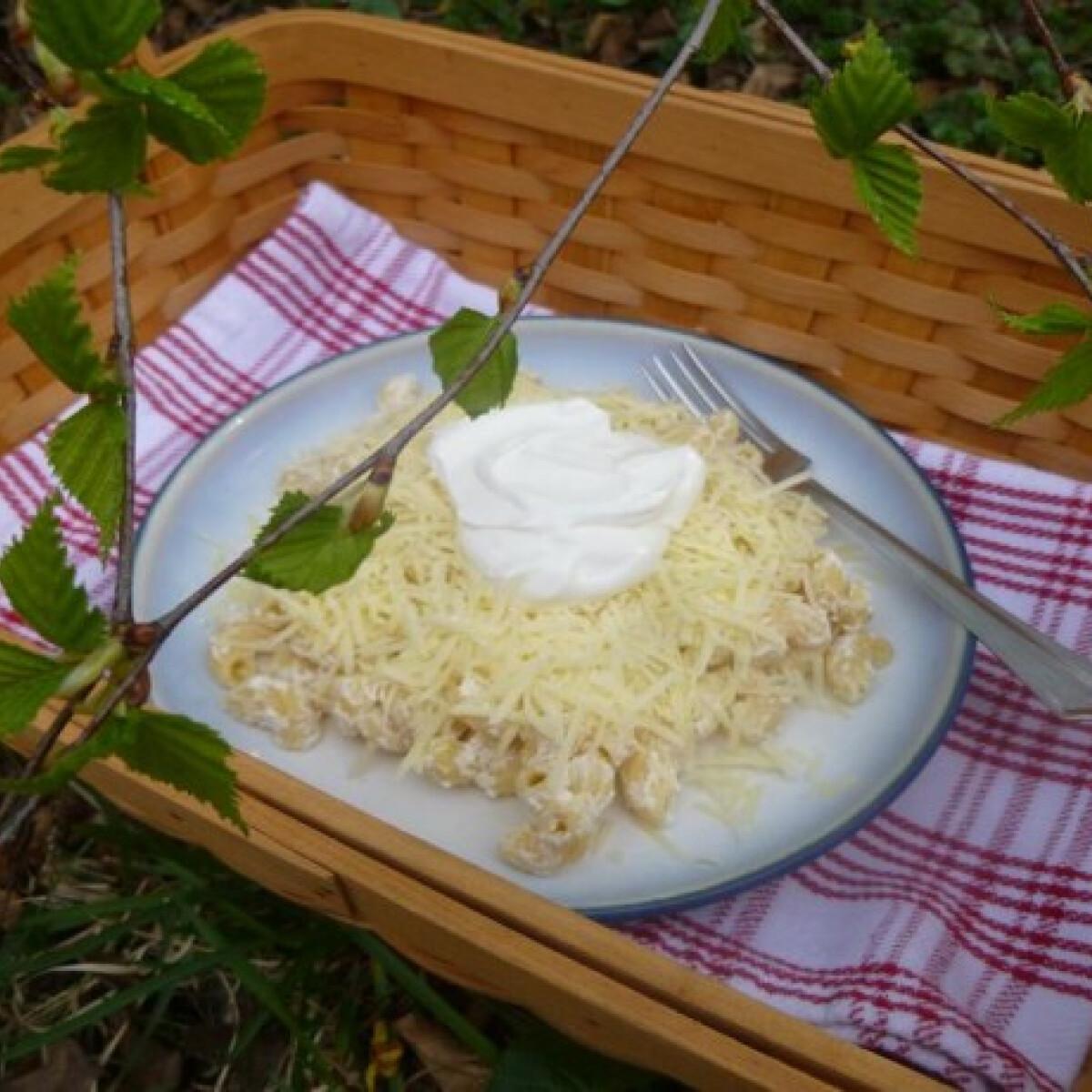 Ezen a képen: Sajtos tészta avagy magyar mac and cheese