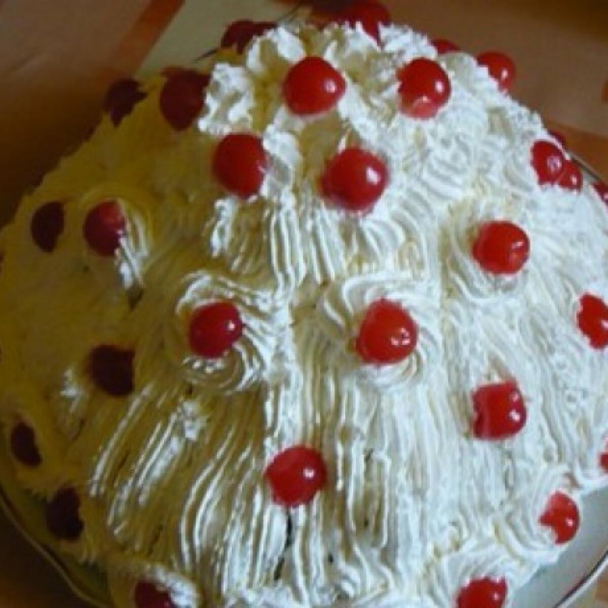 Ezen a képen: Képviselőfánkos torta