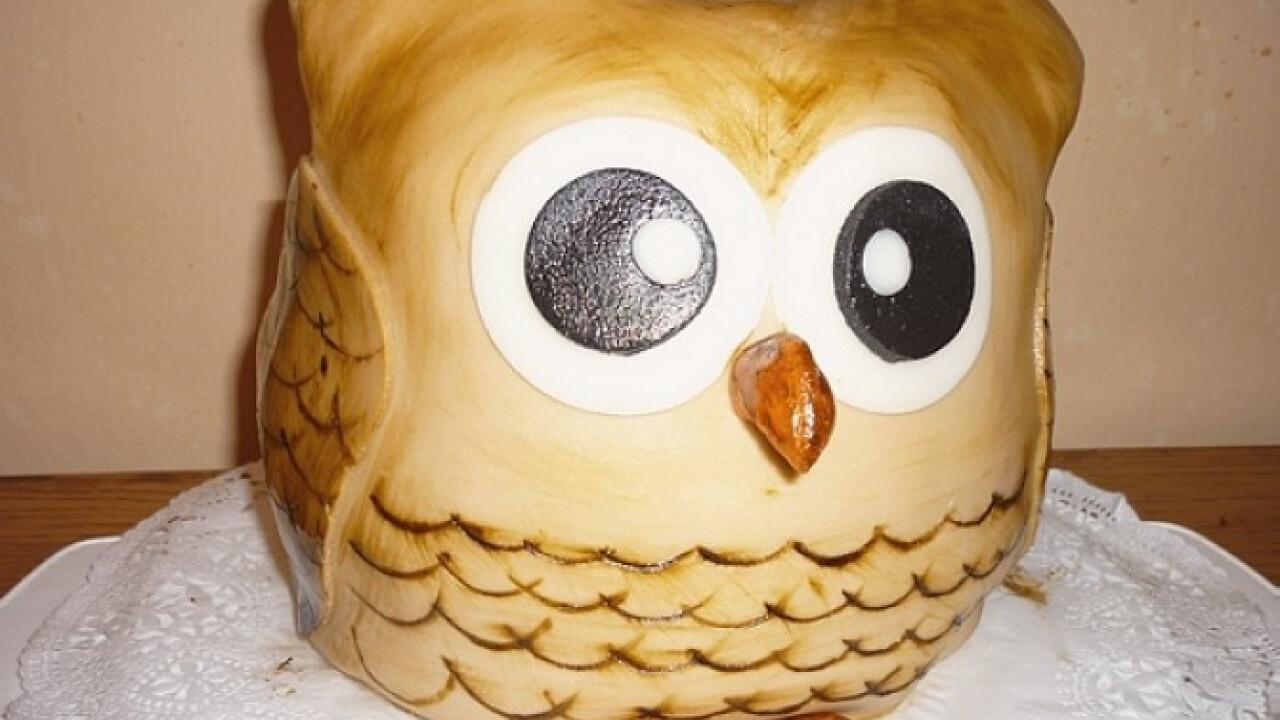 Bagoly torta