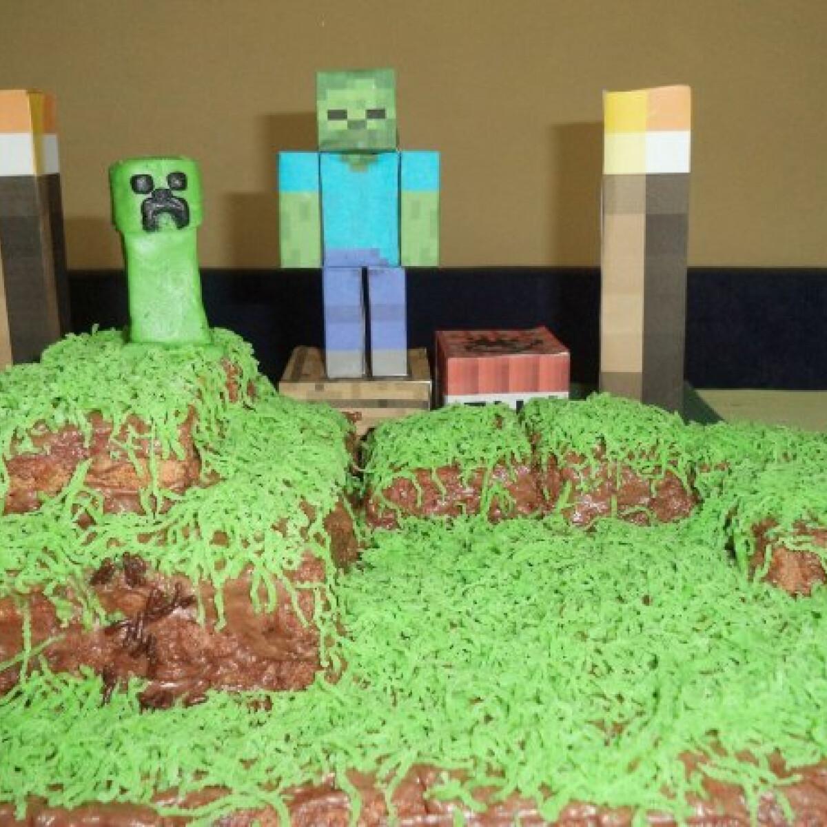 Ezen a képen: Minecraft torta