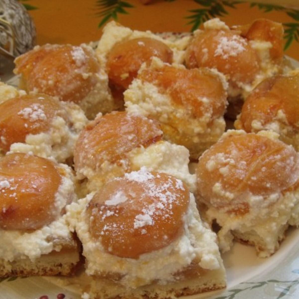 Ezen a képen: Sárgabarackos túrós sütemény