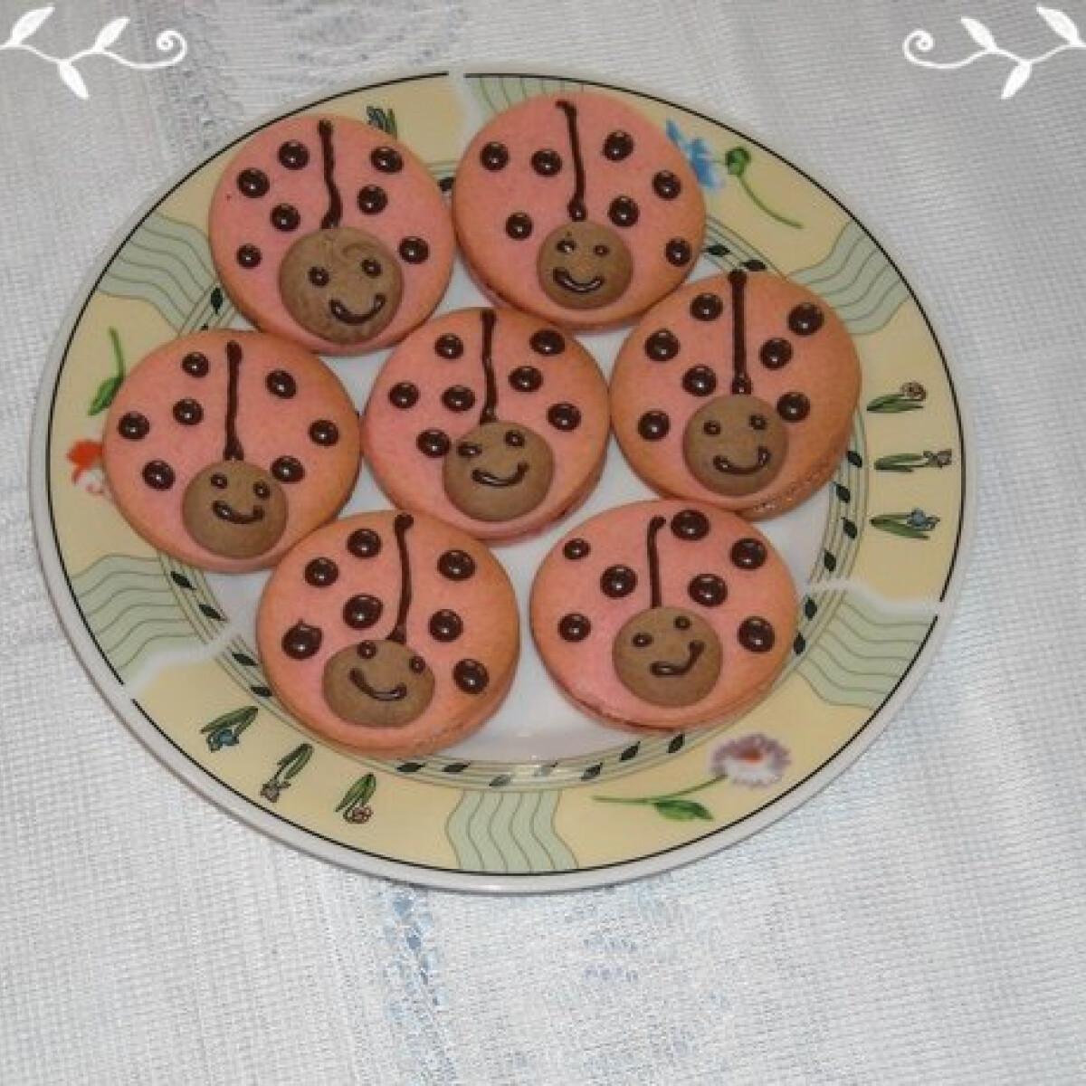 Linzer katicabogár