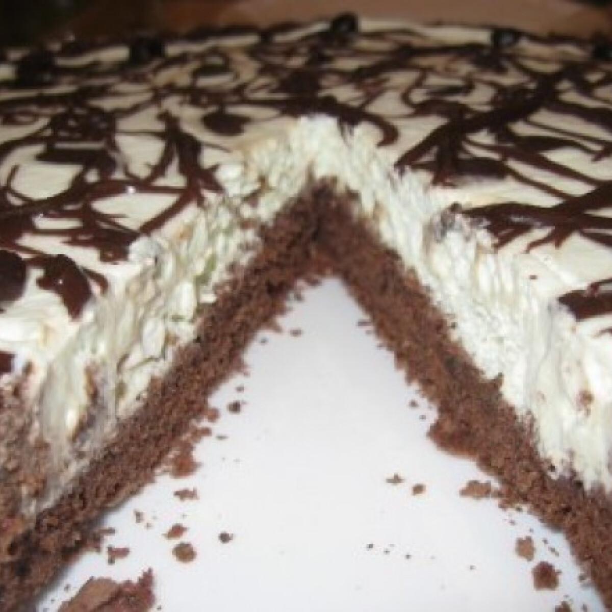 Ezen a képen: Csokis mentatorta