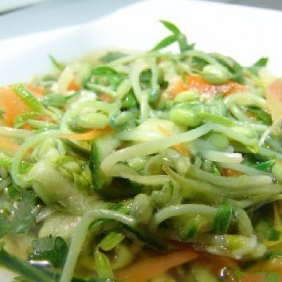 Ezen a képen: Mungóbabcsíra saláta